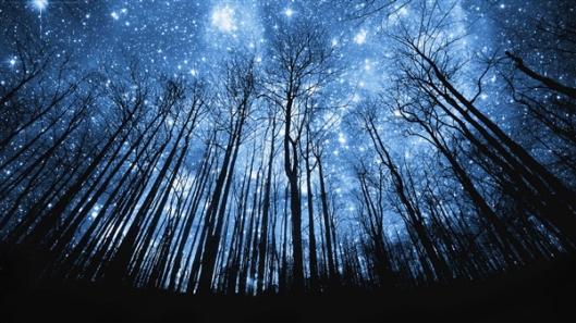 ceu estrelado